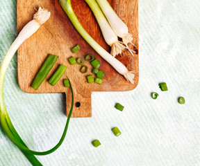 Green onion on wooden cooking board, copy space