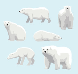 Cartoon Realistic Style Polar Bear Vector Illustration
