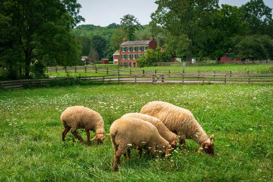 Hale Farm Village, Cuyahoga Valley National Park