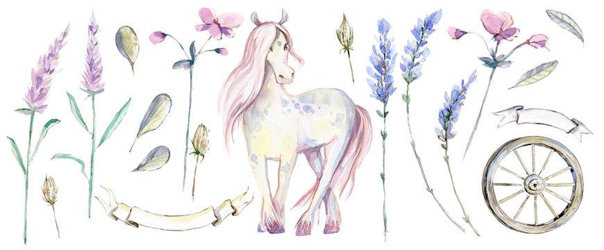 Romantic Provence graphic watercolor collection. Lavender, horse