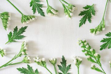 Round frame of white flowers and green leaves. Spring pattern