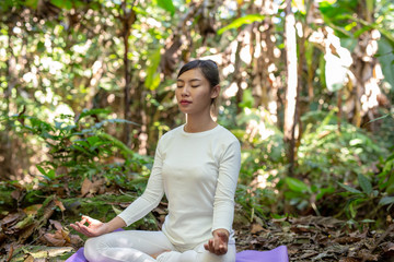 Beautiful girls are playing yoga at the park. Among the natural waterfalls in the forest, exercise concepts