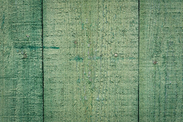 Green wooden texture or background.