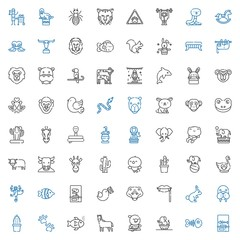 wild icons set