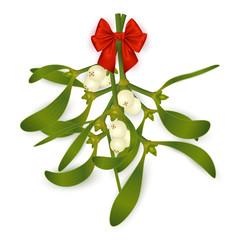 Mistletoe with bow