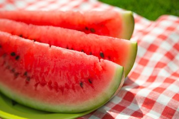 Watermelon Slices on Plate on Picnic Blanket