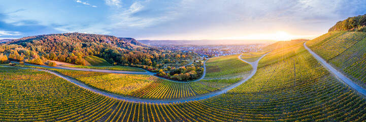 Germany, Baden-Wuerttemberg, Aerial view of Korber Kopf, vineyards at sunset in autumn, panorama Wall mural