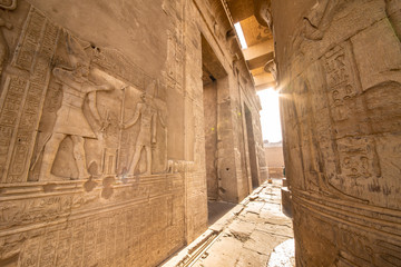 Entrance to the Temple of Kom Ombo built by the ancient Egyptian civilization near Thebes (Luxor) and Aswan Wall mural