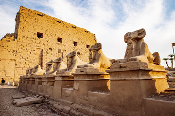 Karnak Temple in Luxor at sunset and the Ram headed Sphinx statues in front