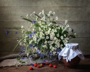 Still life with bouquet of wildflowers