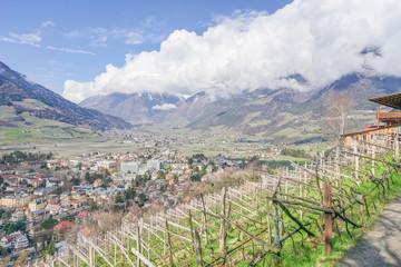 Frühling bei Meran in Südtirol