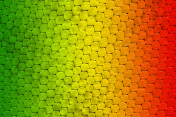 Green, yellow and red colored lizard skin pattern