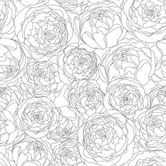 Seamless background pattern with peony flowers. Vector hand drawn illustration. Graphic hand drawn floral pattern. Textile fabric design.