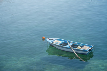 Small white blue boat with paddles anchored on the shore