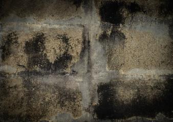 Grunge Concrete, Lichen on the concrete wall.