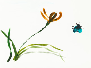 bug and iris flower are hand drawn on creamy paper