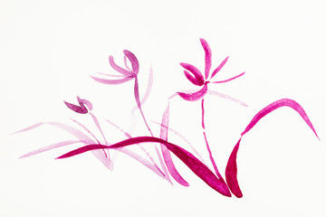 orchid flowers are hand drawn on creamy paper