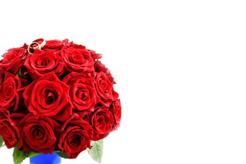 Red roses on a white background. Valentine's Day. Isolate