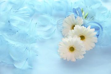 白いガーベラと青い羽根のデザイン