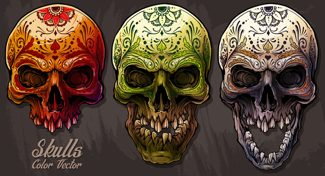 Detailed graphic realistic cool colorful human skulls with mexican tattoo floral ornament. On gray grunge background. Vector icon set.