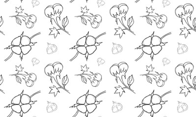 Cotton plant . Vector seamless pattern.
