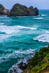 New Zeland iconic, famous beaches concept. Panoramic scenic landscape view of surfers popular Piha Beach in summer, close to Auckland.  North Island.