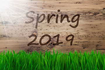 Sunny Wooden Background, Grass, English Text Spring 2019