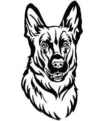 Decorative portrait of Dog Shepherd vector illustration