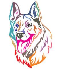 Colorful decorative portrait of Dog Shepherd 3 vector illustration