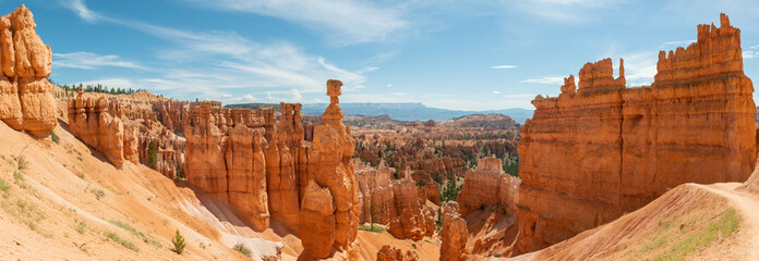 Panorama of hoodoos including Thor's Hammer from Navajo Loop in Bryce Canyon National Park, Utah