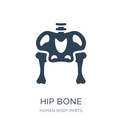 hip bone icon vector on white background, hip bone trendy filled