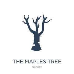 the maples tree icon vector on white background, the maples tree