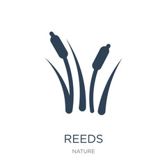 reeds icon vector on white background, reeds trendy filled icons
