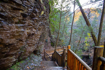 Wooden bridge in the forest and rocky wall