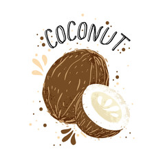 Vector hand draw coconut illustration. Brown coconuts with juice splash isolated on white background. Textured white and brown coconut with milk splashes, juice tropical fruit with word Coconut on top