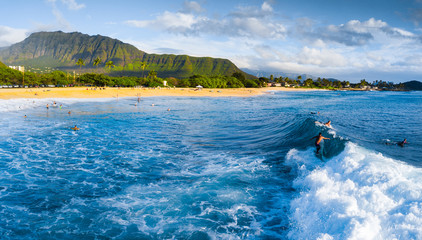 Wall Mural - Panorama of the surf spot Makaha with the surfer riding the wave. Oahu, Hawaii