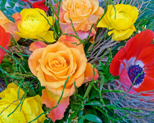 colorful roses and poppies closeup, top view