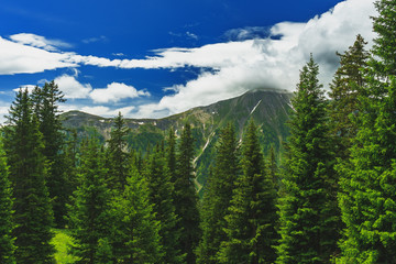tyrolean Landscape on a Summerday