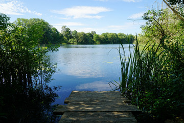 idyllic bathing lake with old wooden jetty