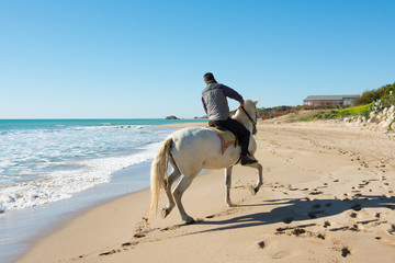 young man ride a white horse on the beach