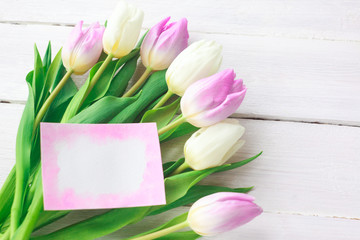 White and purple tulips on a white wooden background. Spring. International Women's Day. Valentine's Day. card ,Selective focus.