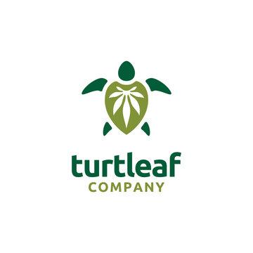 Turtle with Cannabis Leaf / Hemp logo design
