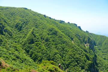 제주에 있는 한라산의 봄 풍경이다.