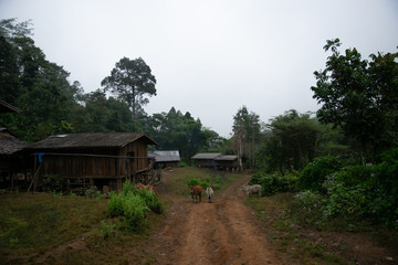 The small villages in the countryside. Omkoi,Chiang Mai province, Thailand