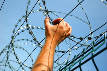 Barbed wire fence with blue skies