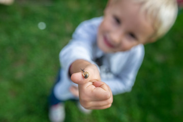 Top view of cute toddler with tiny snail on his finger