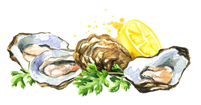 Oyster with lemon, seafood, Watercolor hand drawn illustration isolated on white background