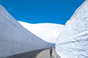 【日本・富山県】雪の大谷