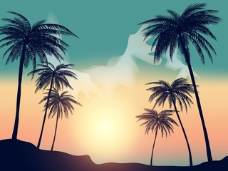 Summer tropical backgrounds with palms, sky and sunset.