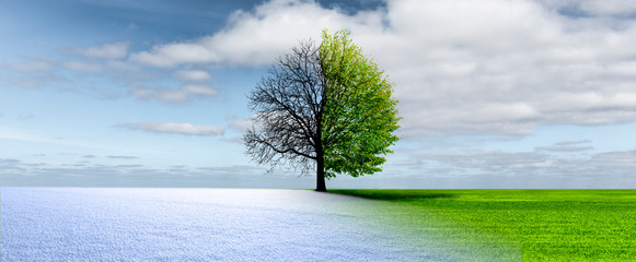 Sprimng winter change